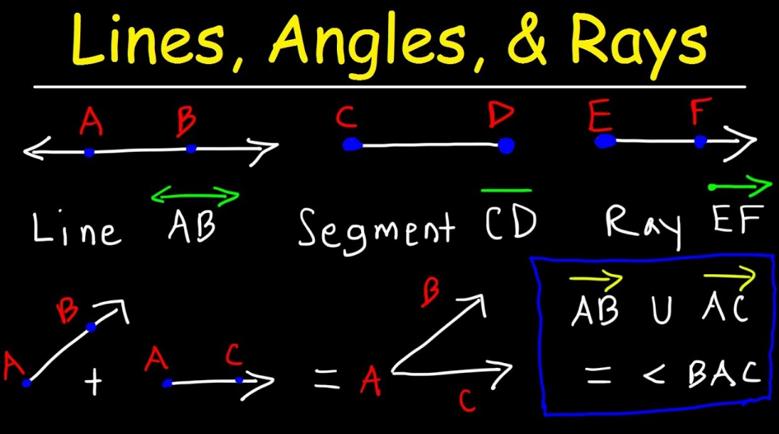 Lines, Segments, and Rays